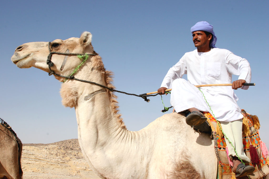 an essay on the bedouin Free essay: the sanusi bedouin of libya, also known as libyan bedouin, sanusiya, or the senussi of cyrenaica, are a semi-nomadic people living primarily.